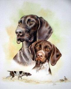 Ann Johnson Painting