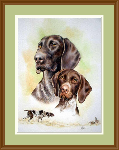 Colour GSP Print by Carol Johnson with frame
